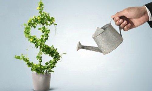 Descubra porque você precisa saber sobre crédito sustentável